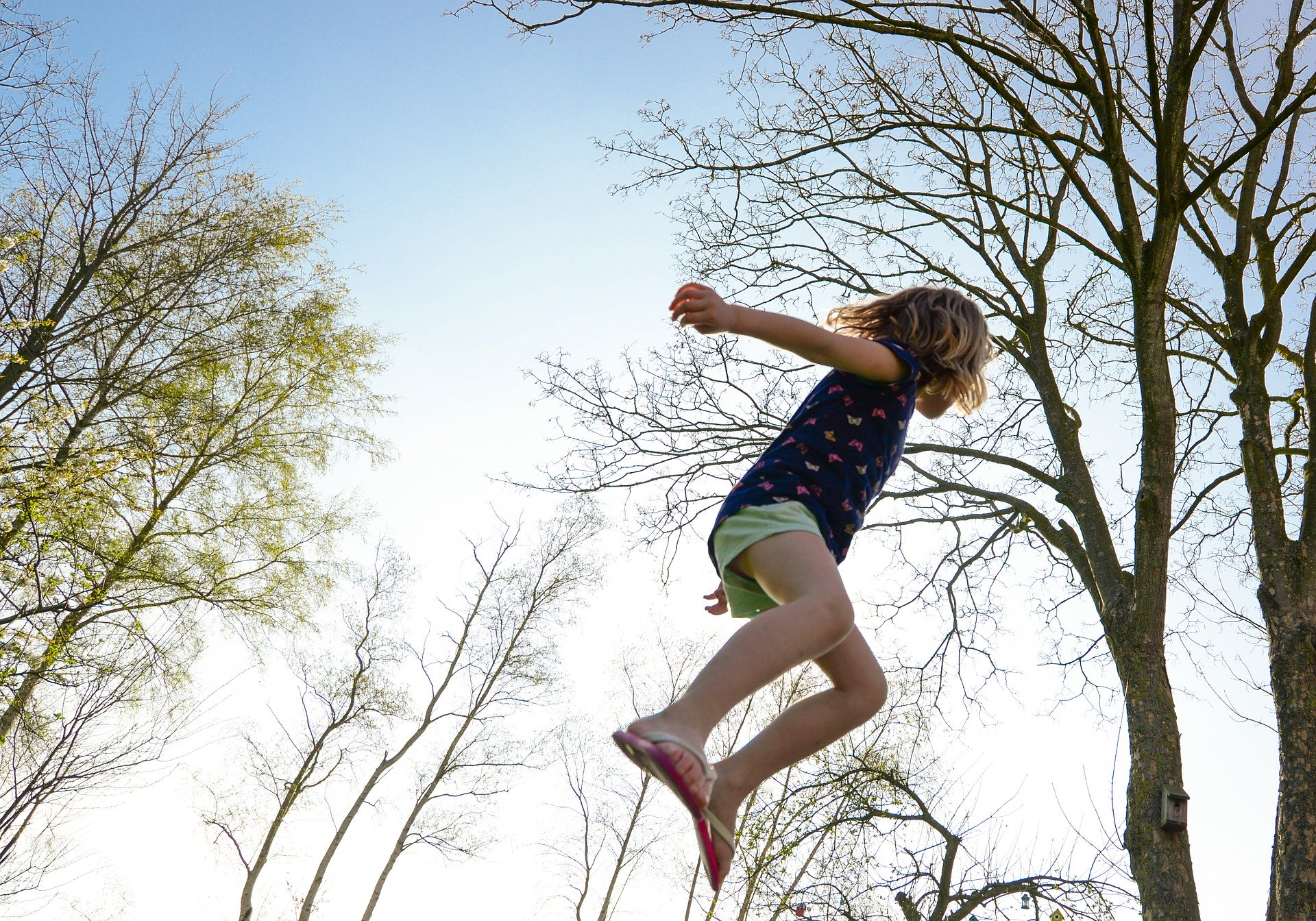 trampolin rund oder eckig
